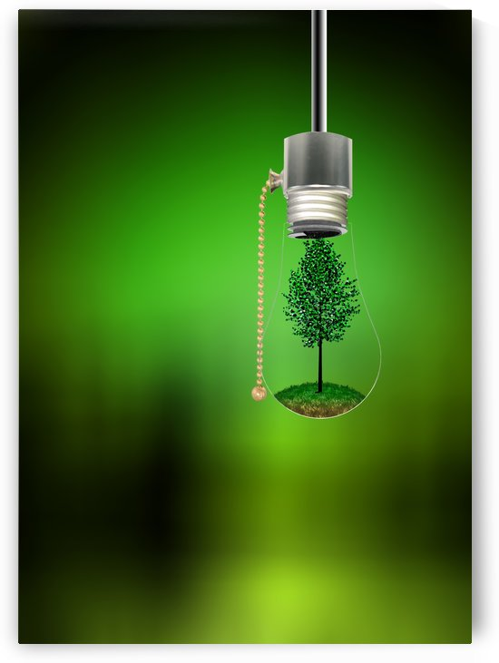Tree in Hanging Bulb by Bruce Rolff