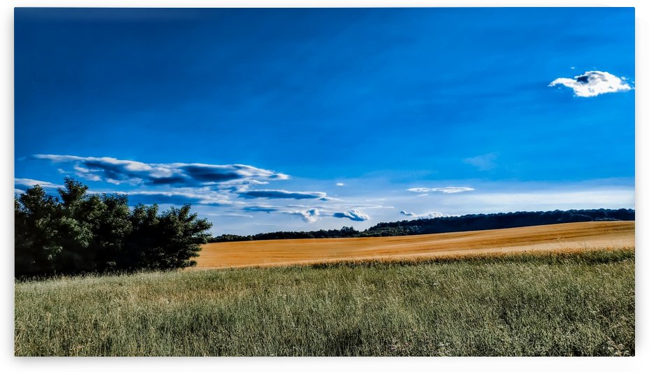 Summer landscape by Michal Dunaj