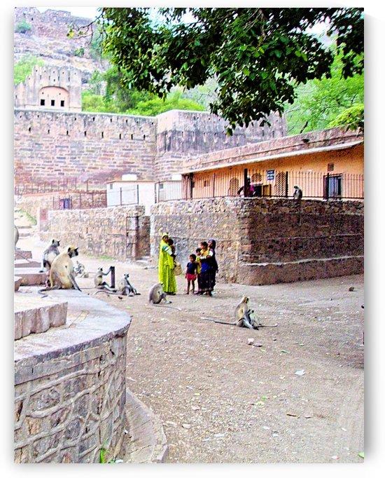 Monkey village scene by Gina Lafont