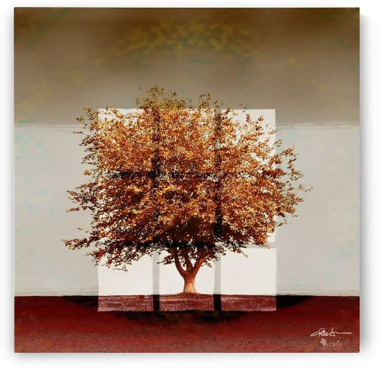 Window2 on Sienna Tree 1x1 by Veratis Editions