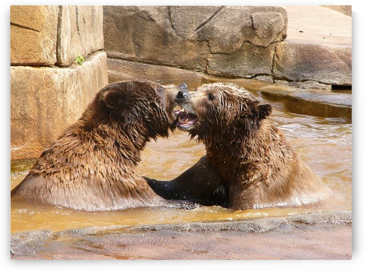 How About a Smooch by Lisa Bates