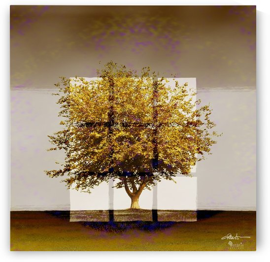 Window2 on an Amber Tree 1x1 by Veratis Editions
