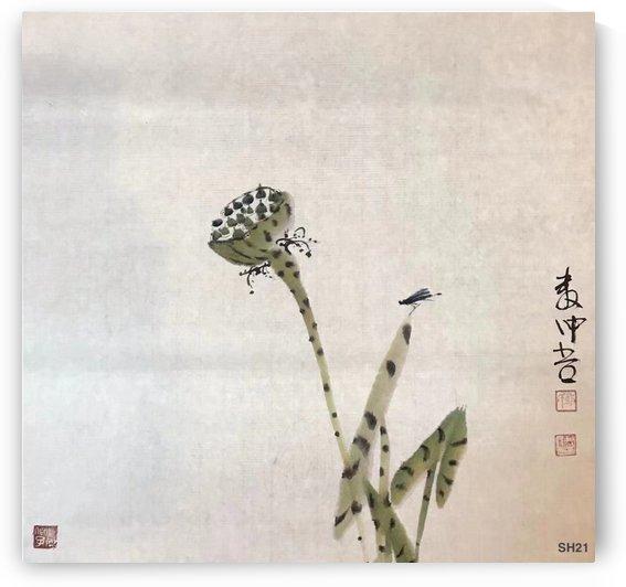 SH21 Root Of Lotus  by Zhongwu
