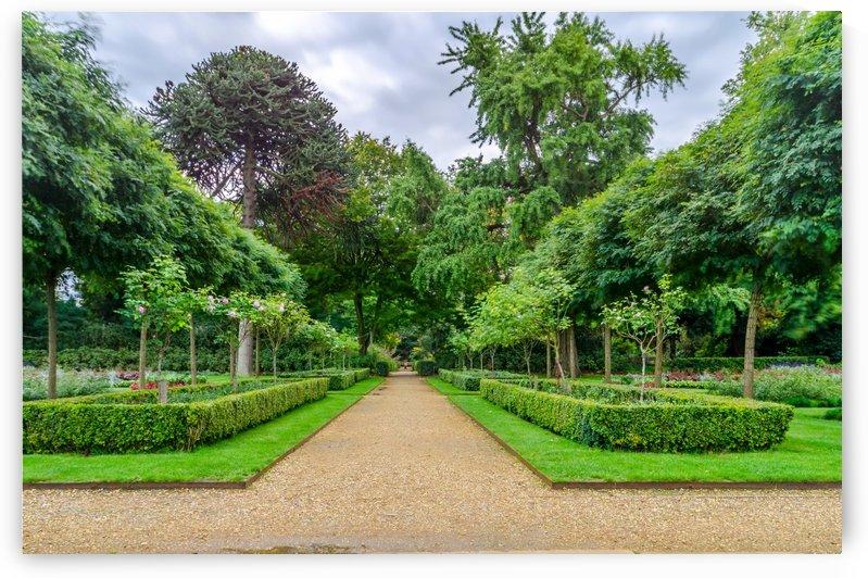 Magical garden of London by RezieMart