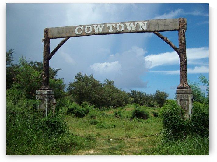 Cow Town Gate by On da Raks