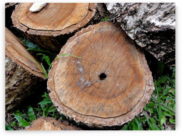 Chopped Log by On da Raks