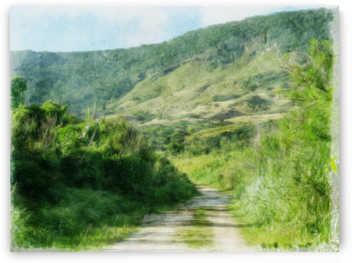 Road to Mt Savanah  by On da Raks