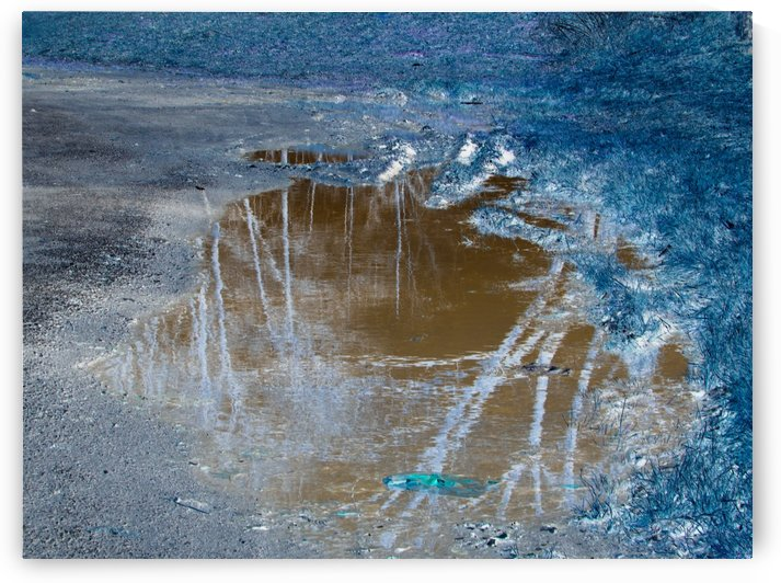 Value of a Puddle  by Daniel Rothenberg