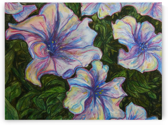 Petunias by Lisa Bates