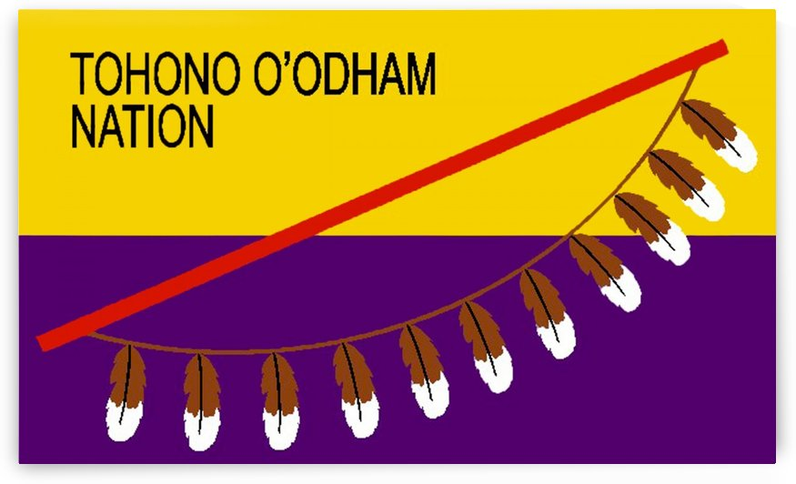 Tohono Oodham Nation Flag by Fun With Flags
