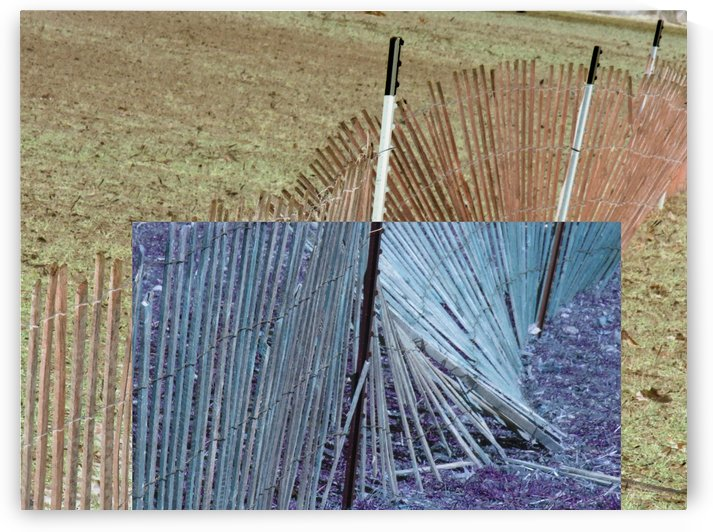 Squarish Fence by Daniel Rothenberg