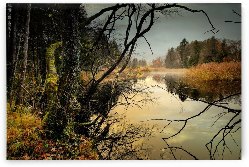 lake pond fog water waters by Shamudy