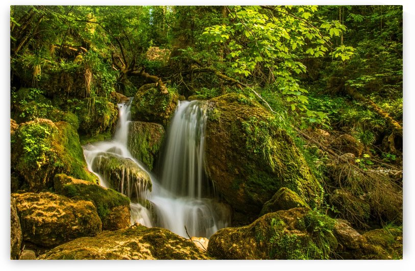 waterfall green forest nature by Shamudy