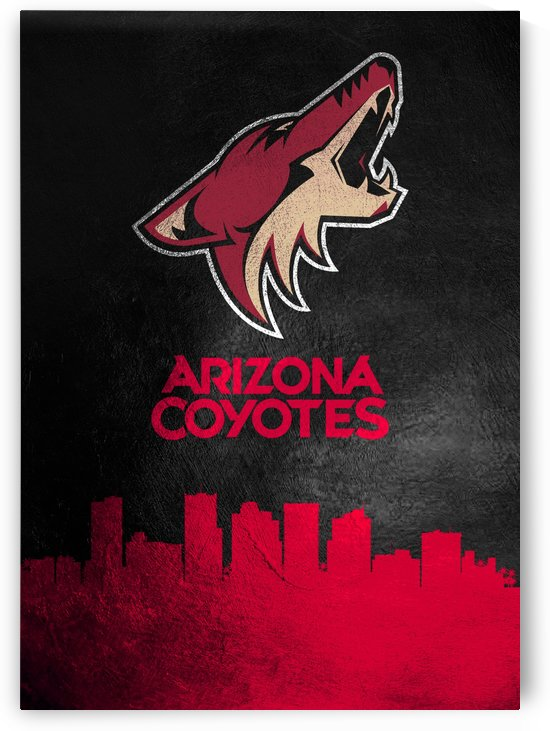 Arizona Coyotes by ABConcepts