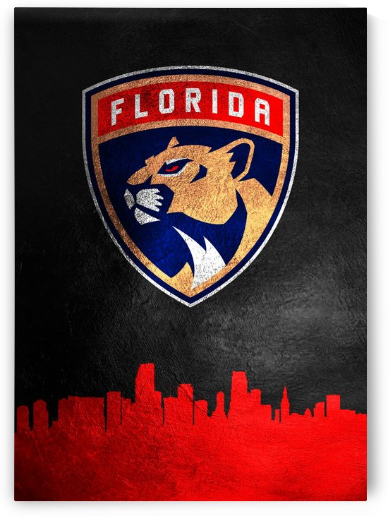 Florida Panthers by ABConcepts