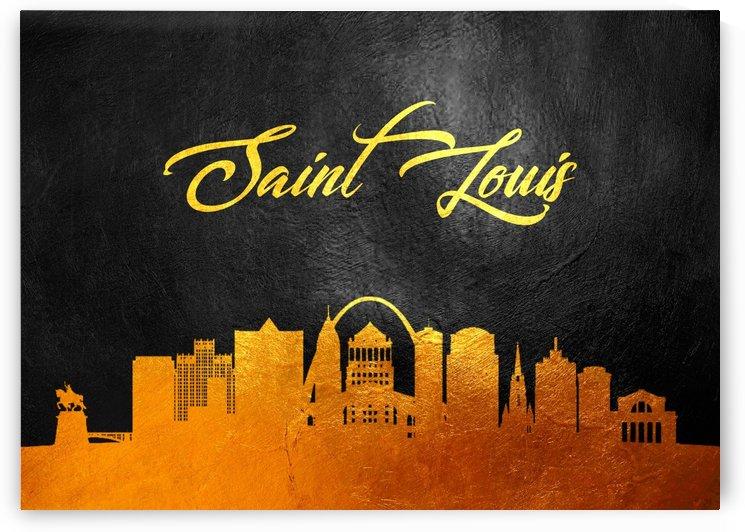 Saint Louis Missouri by ABConcepts