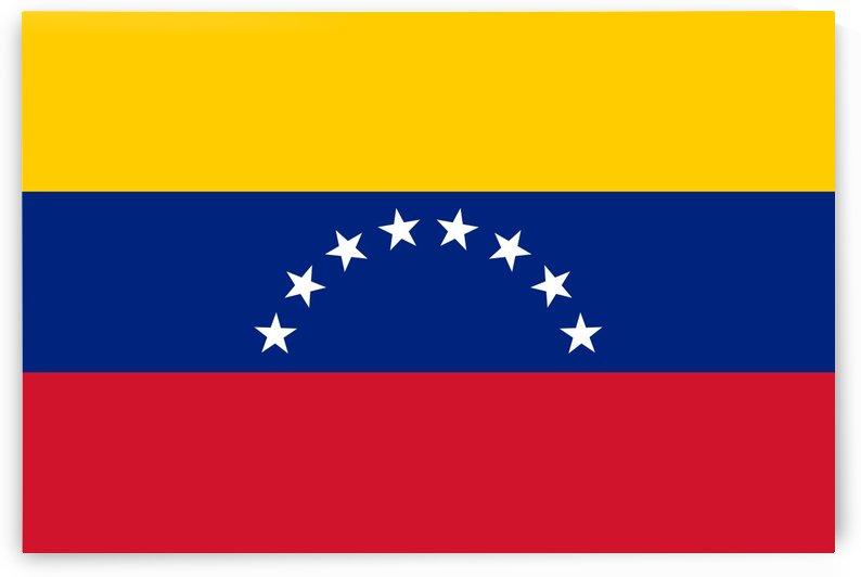 Venezuela Flag by Fun With Flags