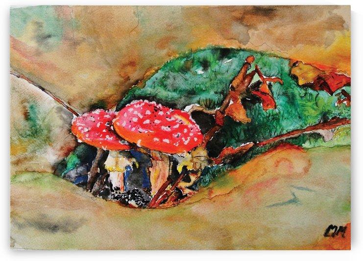 Sampioen Mushroom. by Mariska Meyers