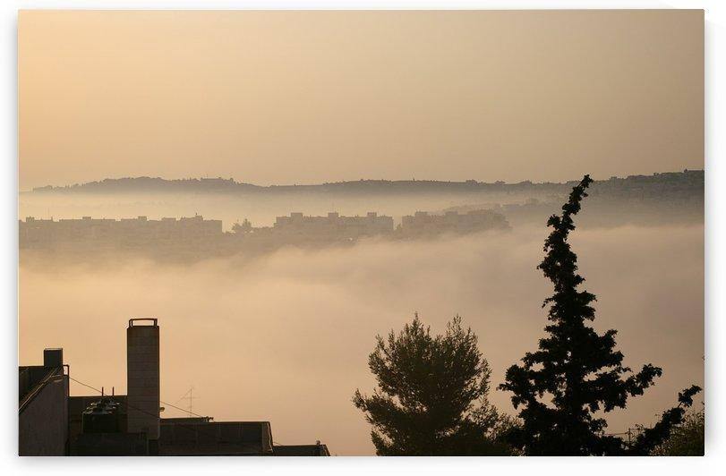 Fog by AndreiPodelko