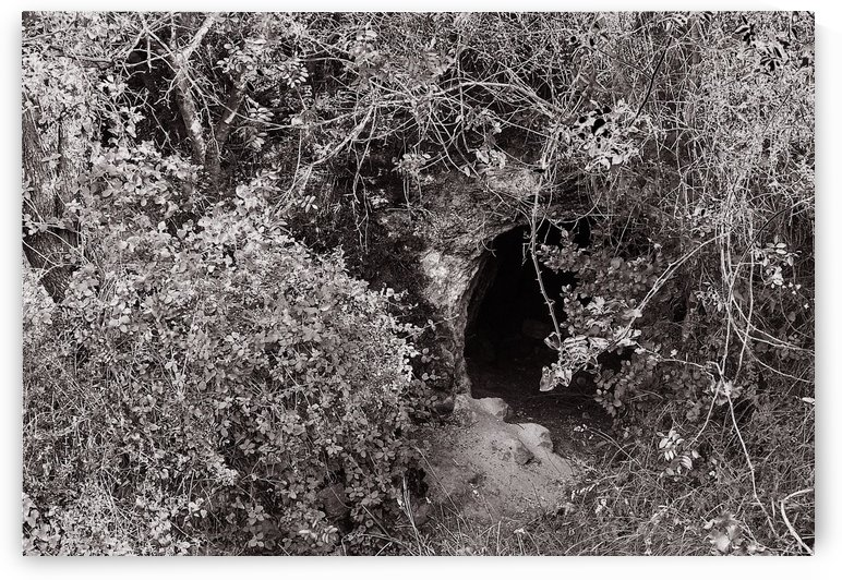 Cave entrance by AndreiPodelko