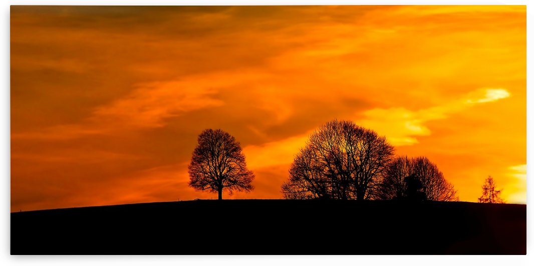 Sky On Fire by 5280Images