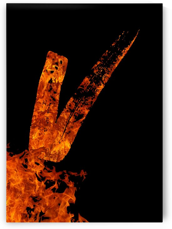 Burning on Fire Letter V by Artistic Paradigms