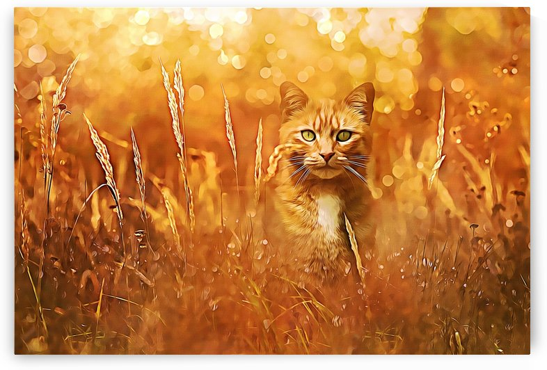 Little Tiger in the Grass by Alpenglow Workshop