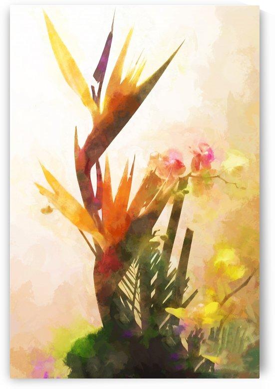 TwoLittleBirds by Jacqueline Sleter