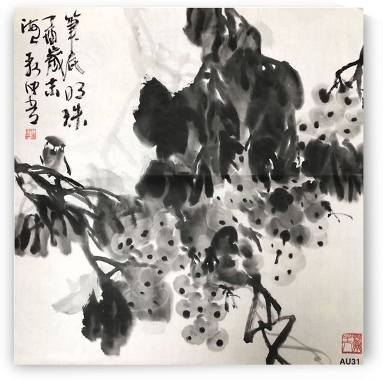AU 31 The Pearl    by Zhongwu