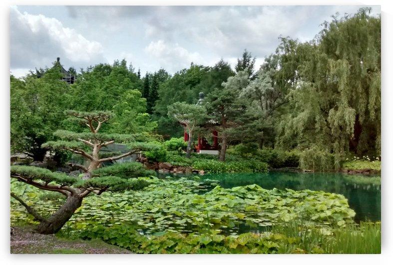 Paysage Zen landscape 2 by Createm