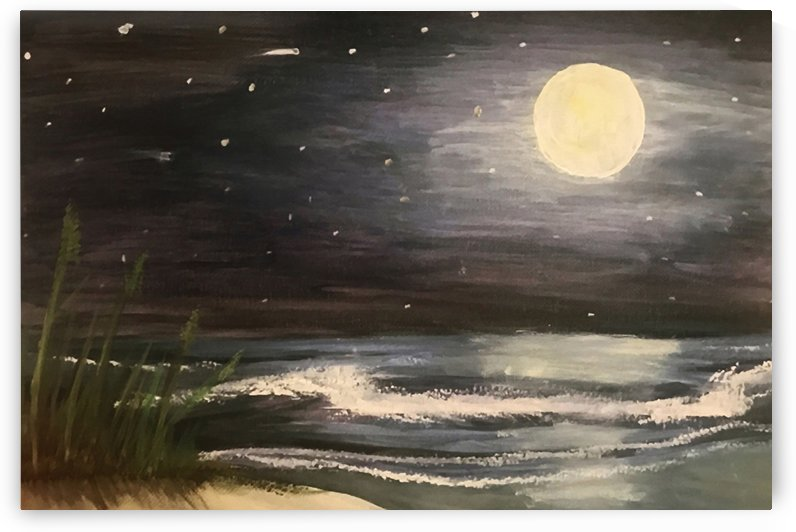 Moonlit Seascape by Jacqueline Sleter