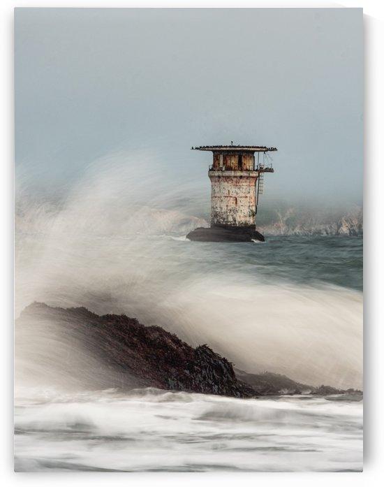 Wave in San Francisco Coast  by Raquel Creative