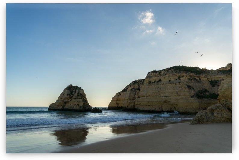 Sundown Seagulls - Algarvian Gold Coast Beachscape with Cliffs by GeorgiaM