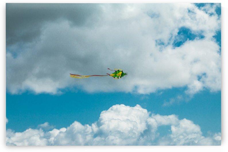 Happy kite by Slava Eremin
