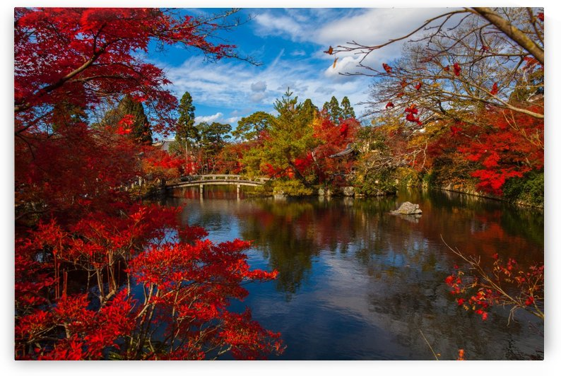japanese asia foliage ancient by Shamudy