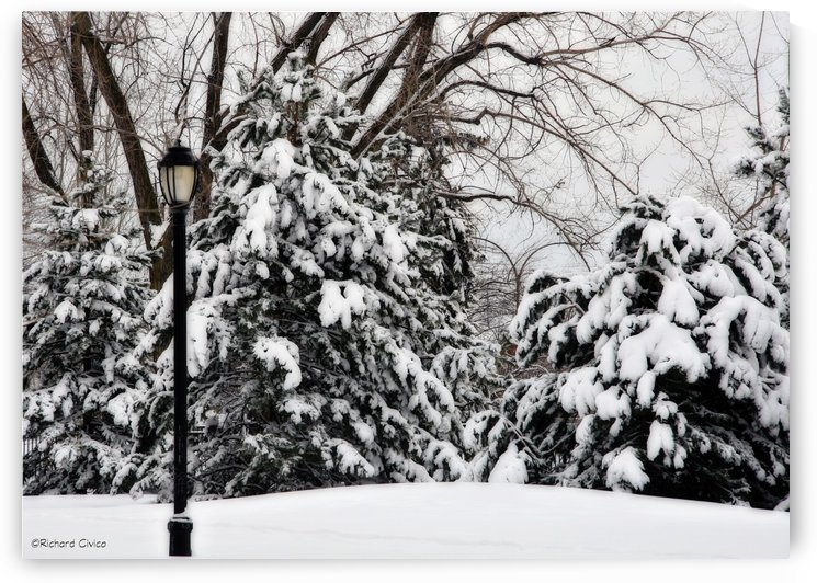 Freshly Fallen Snow by Richard Civico