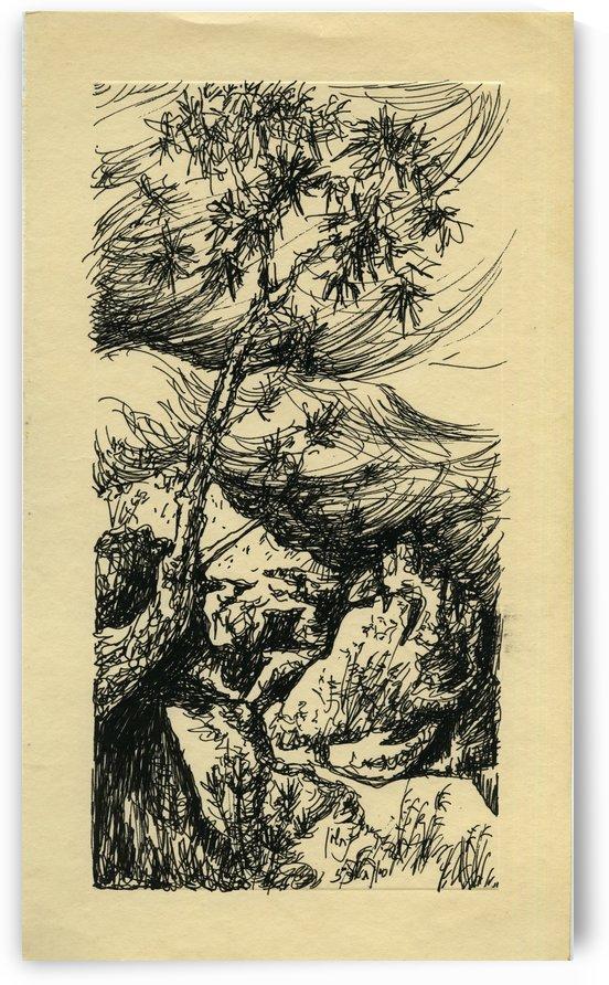BNC1967-026 by Baruch Nachshon
