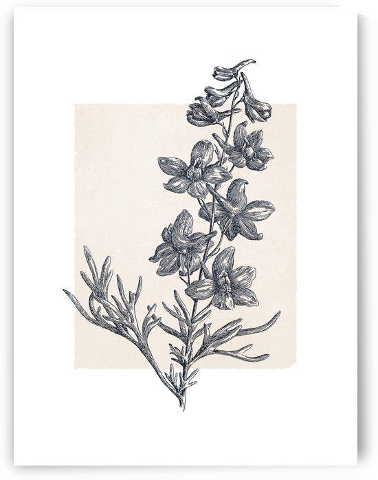 Botanical Sketch 06 by Apolo Prints