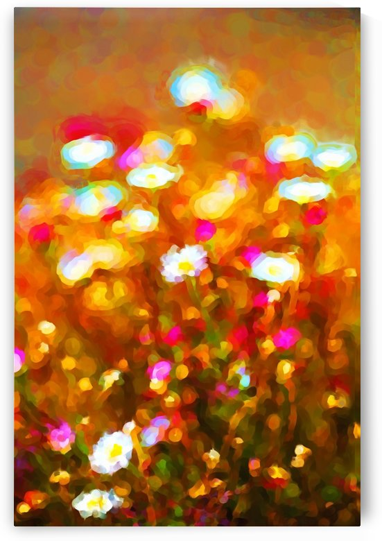 Summer Daisy Patch by Joy Watson