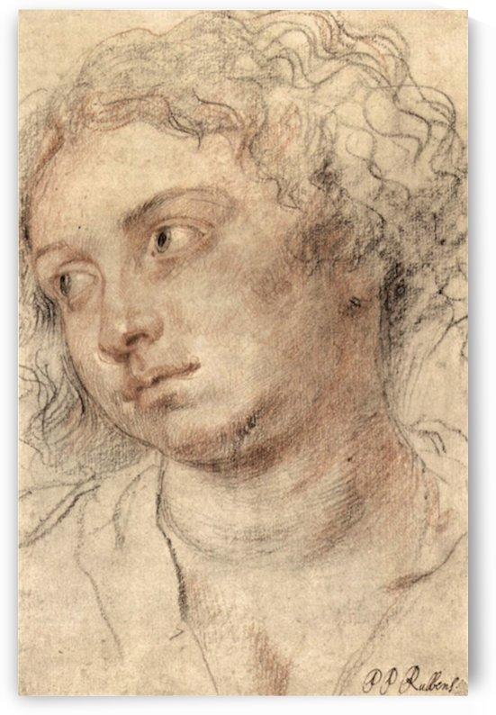 Head of a woman -3- by Rubens by Rubens