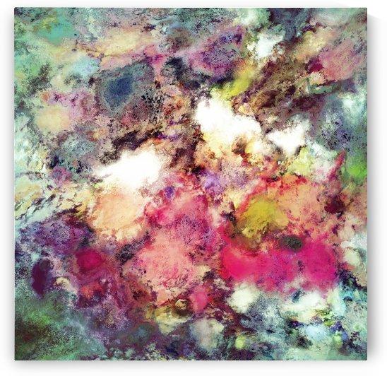 Raspberry rocks by Keith Mills