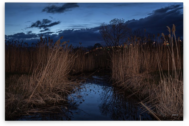Nuit sur le pont- Collection EXC-S by Sylvain Bergeron Photographies