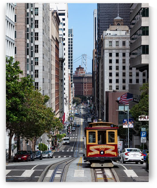 San Francisco City Scene by David Yoon