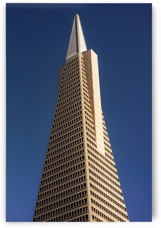 Transamerican Pyramid by David Yoon