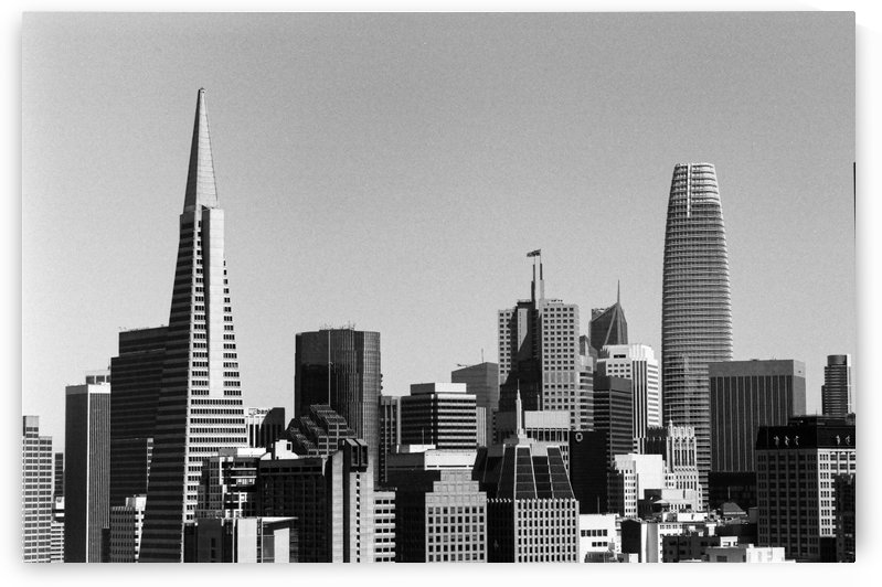 Black and White San Francisco Skyline by David Yoon