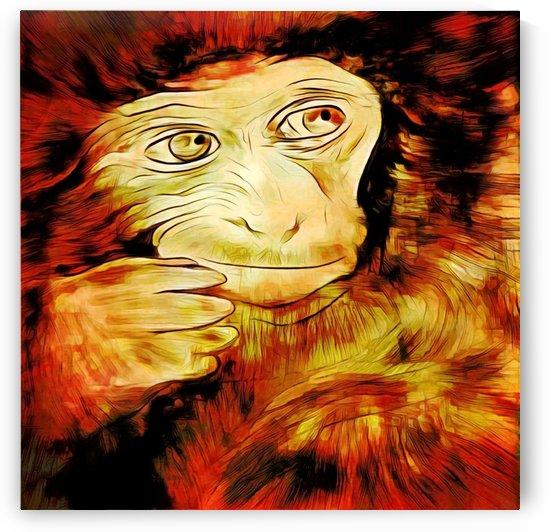 Macaque II by Rabid Solutions