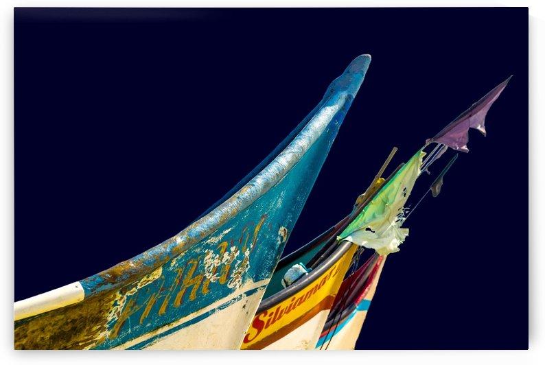 Boat - XXXVII by Carlos Wood