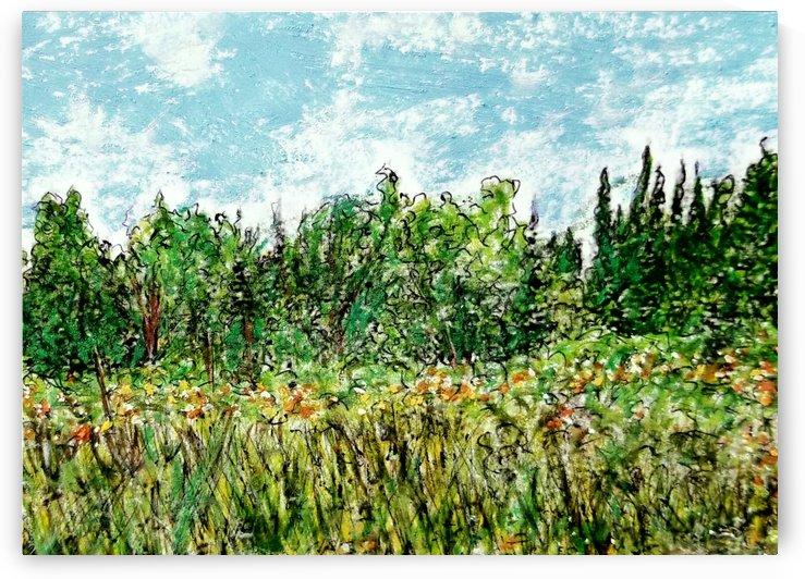 The Meadow by djjf