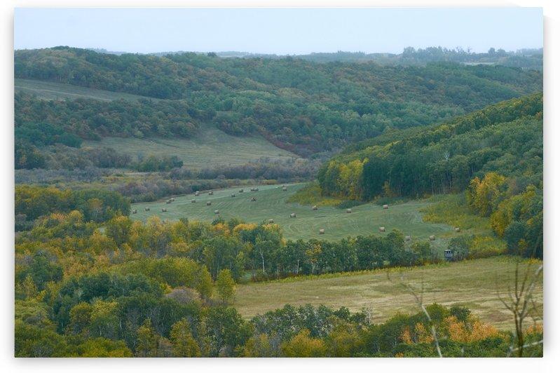 Prairies.Rain. by Vasyl
