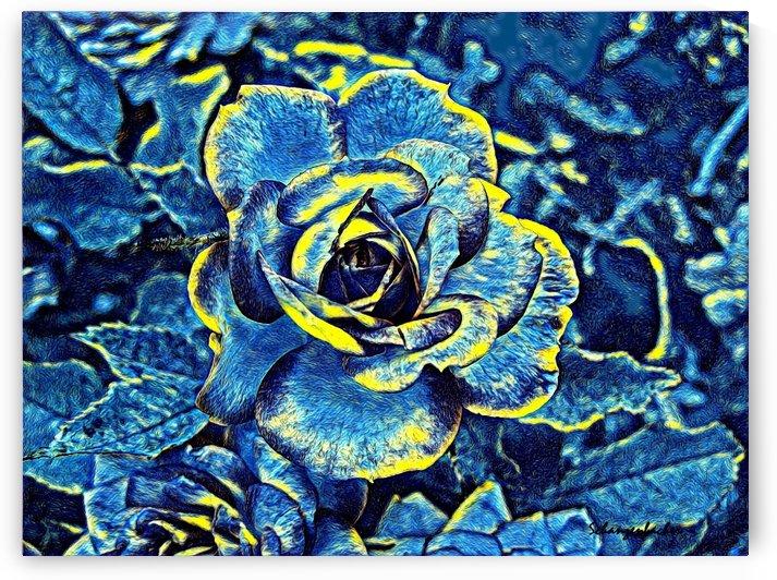 Blue Rose by Aurelia Schanzenbacher Sisters Fine Arts